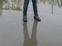 Kann ein Karakal wirklich auf dem Wasser gehen?